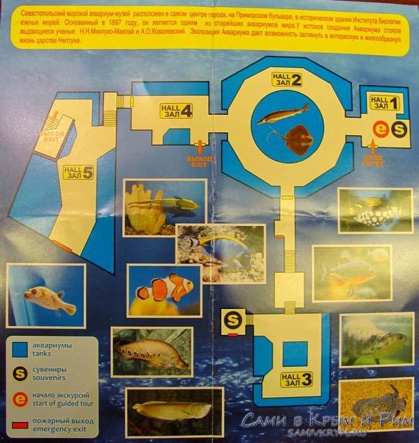 akvarium-v-sevastopol-plan-shema