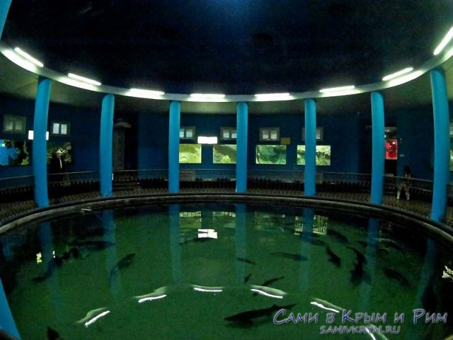 glavnii-zal-akvariuma