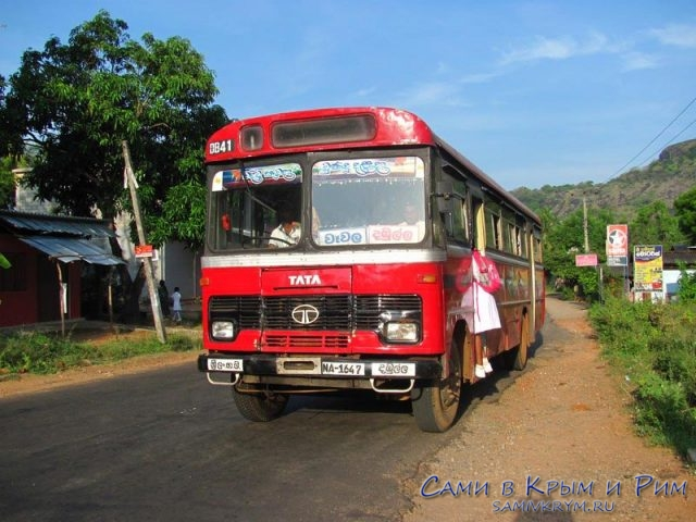 dambulla_city-local-bus
