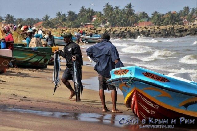 Рыбаки вернулись с уловом