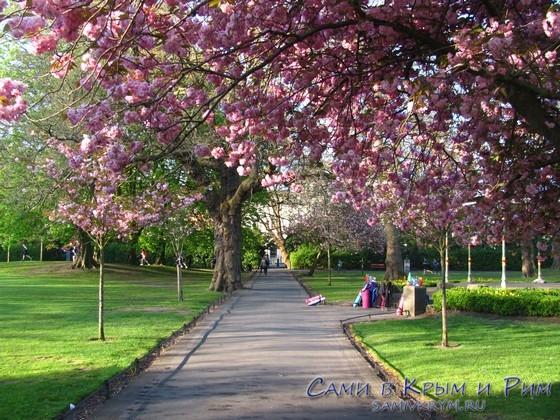 stephens-green-park