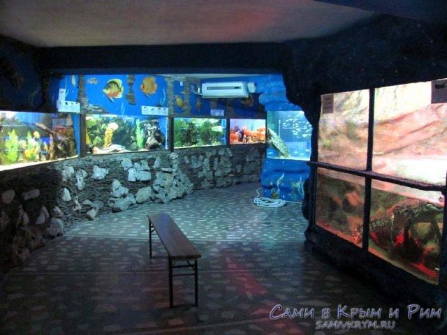 zali-alyshtinskogo-akvariyma