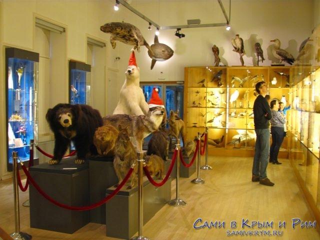 nature-museum-rotterdam