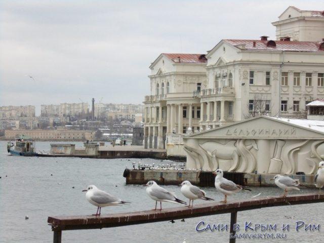 vid-na-dvorec-pionerov