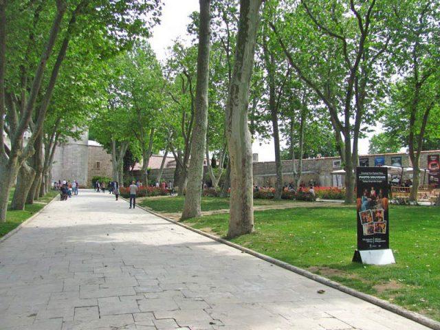 Дорожка-к-кассам-и-входу-во-дворец