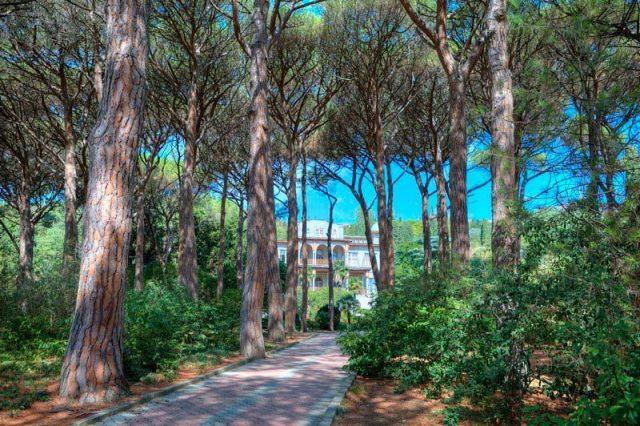 Карасан-имение-за-деревьями