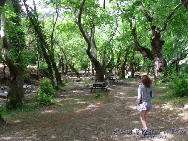 Козак-Айвалык-отдых-на-природе