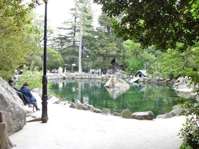 Озеро-с-лебедями