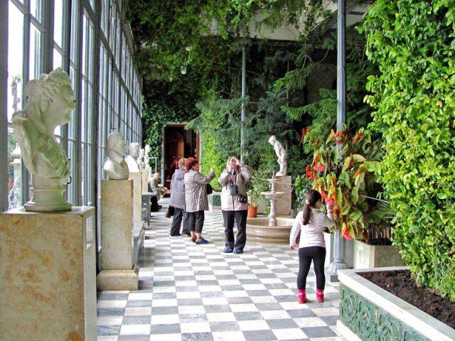 Скульптуры-зимнего-сада