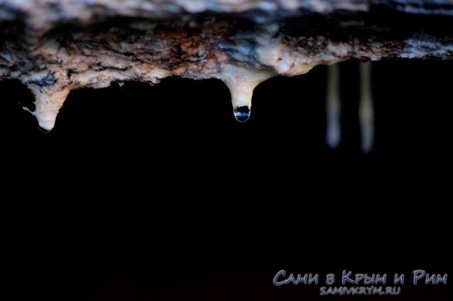 Пещерные-воды