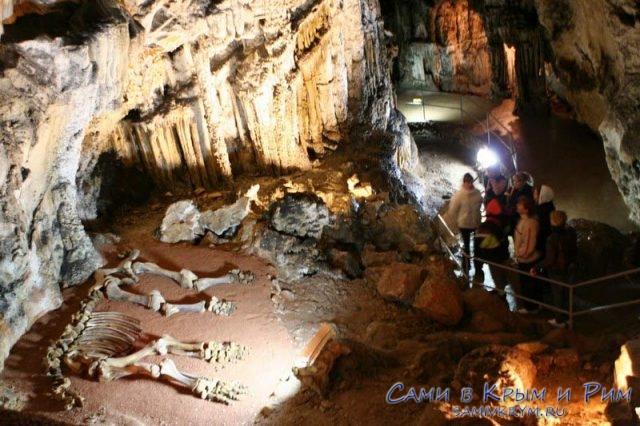 Скелет мамонта в пещере