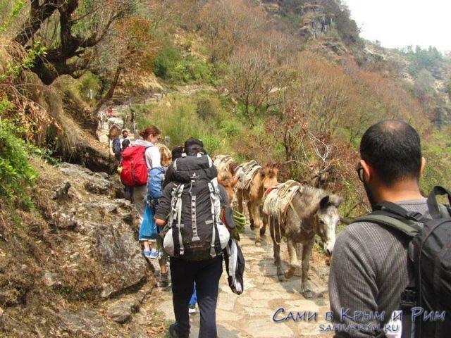 Вместе с ослами лезем в гору