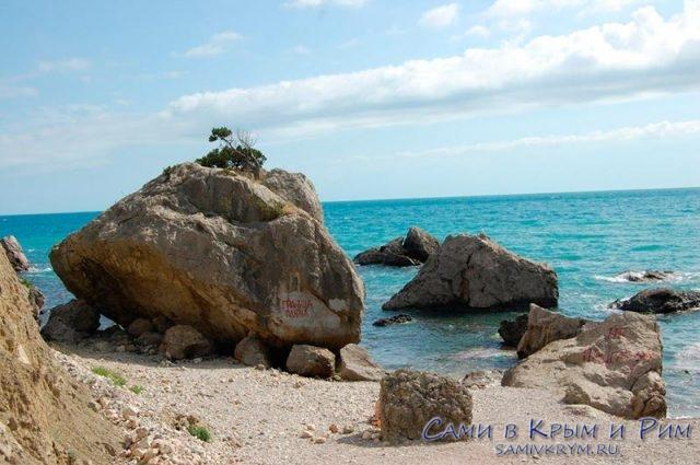 Каменистый пляж Дельфина