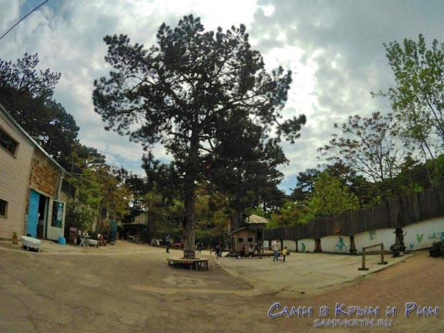 Детская площадка и скалодром