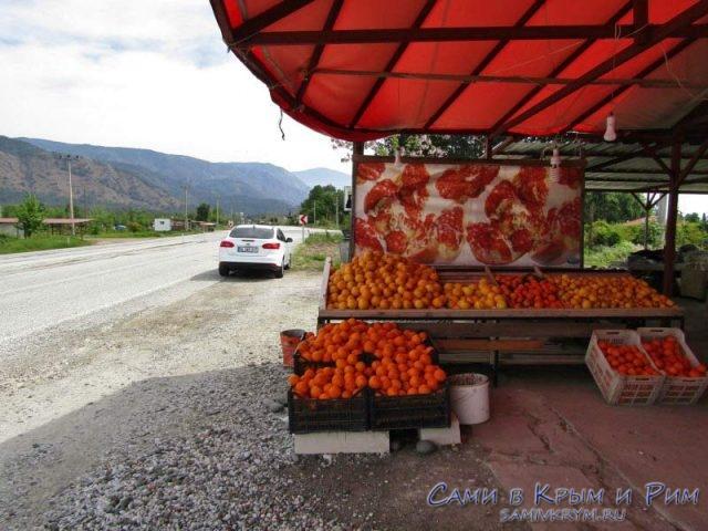 Апельсиновая остановка по дороге