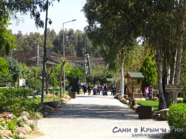 Дорожки в зоопарке Измира