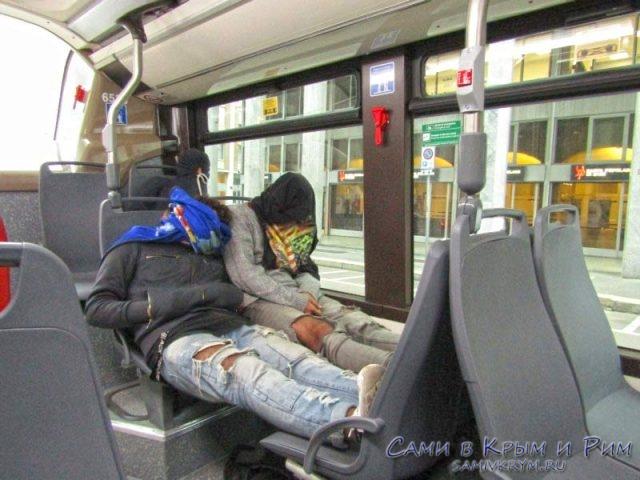 Незванные пассажиры в автобусах