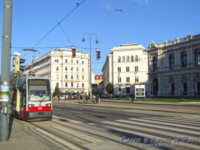 Городской транспорт Вены