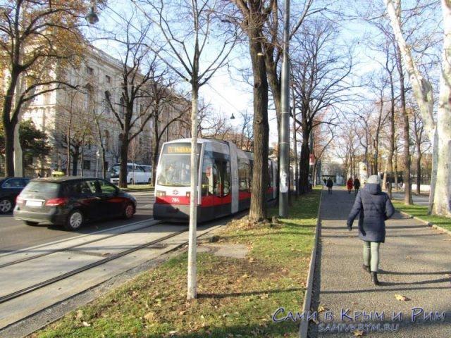 Трамваи на маршруте по кругу вокруг центра Вены