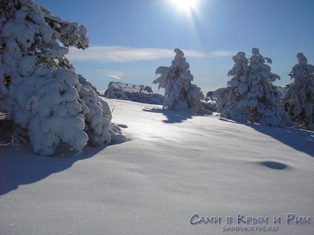 В очередь за зимними забавами или как в Крыму на снег посмотреть