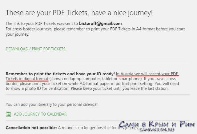 Билет можно хранить на телефоне в формате PDF