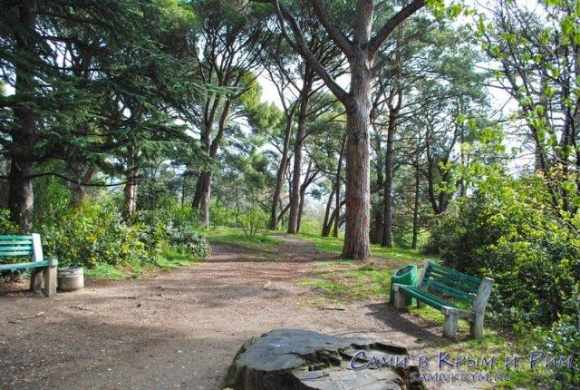 Верхняя часть парка Ливадии