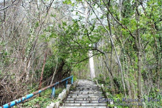 Запущенная нижняя часть Ливадийсого парка
