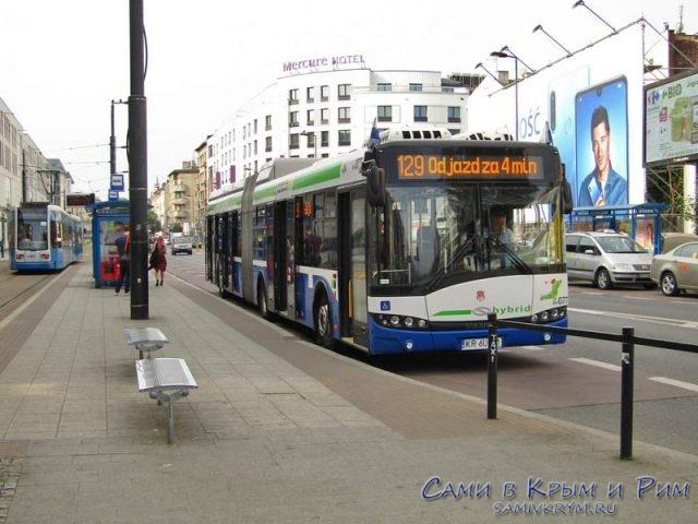 Автобусы в Кракове