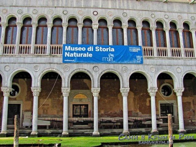 Музей натуральной истории