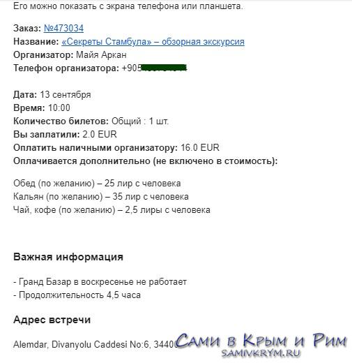 Электронный билет Спутник