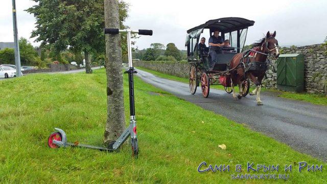 Мой транспорт против лошадок